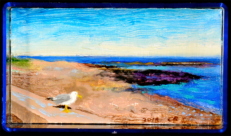 Christy Bergland, acrylic boxes, Little Ocean Ave Seagull